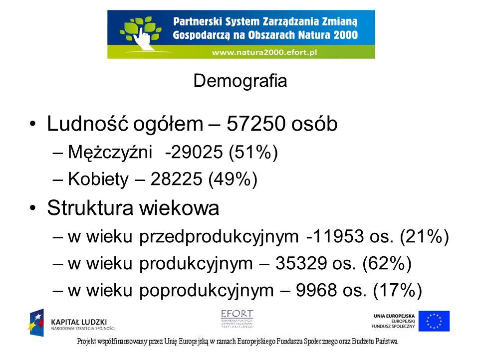 Ludność ogółem – 57250 osób Struktura wiekowa Demografia