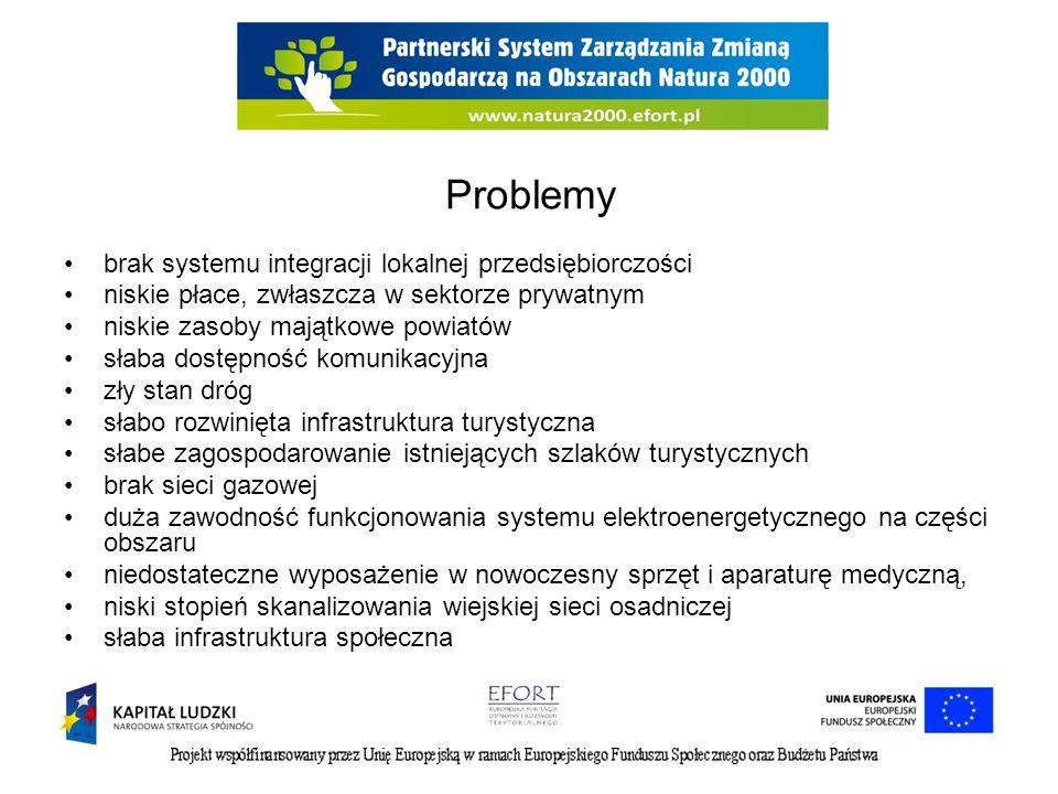 Problemy brak systemu integracji lokalnej przedsiębiorczości