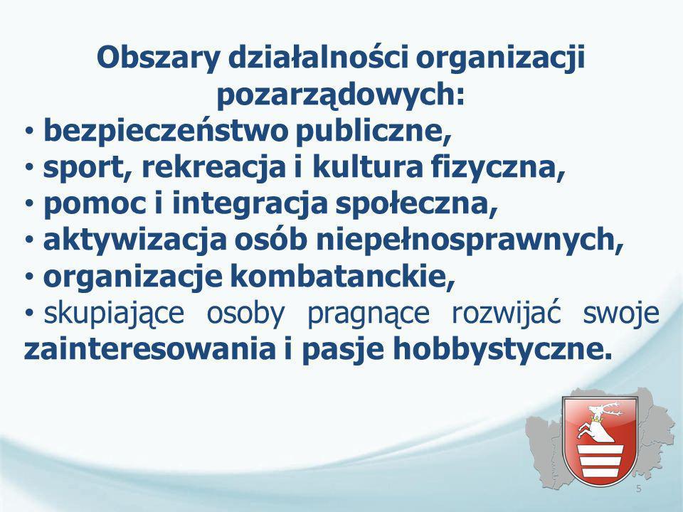Obszary działalności organizacji pozarządowych: