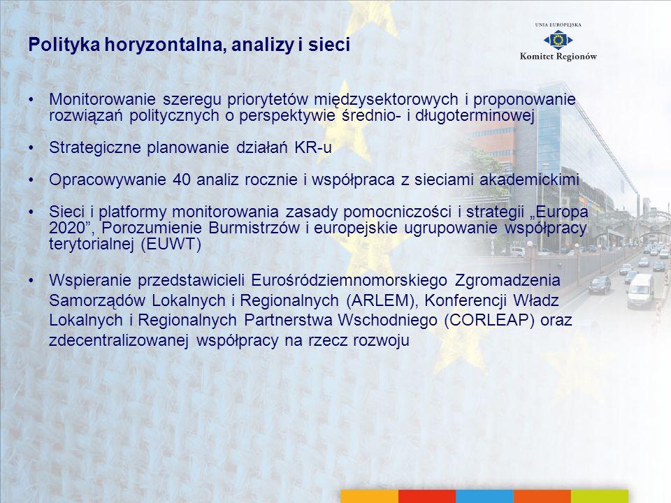 Polityka horyzontalna, analizy i sieci