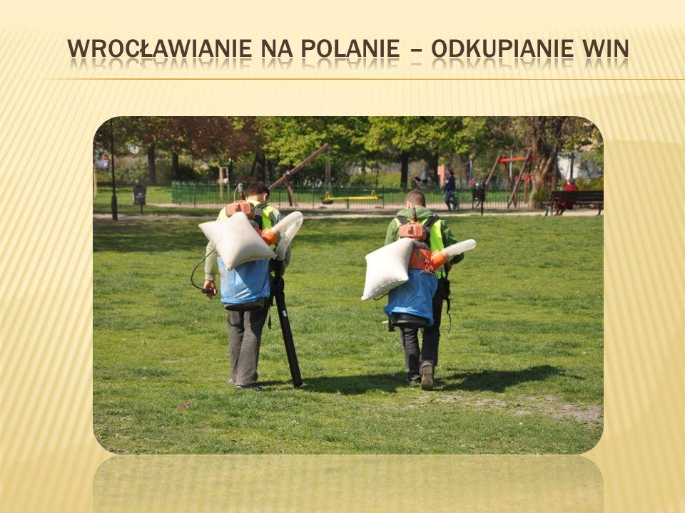Wrocławianie na polanie – odkupianie win