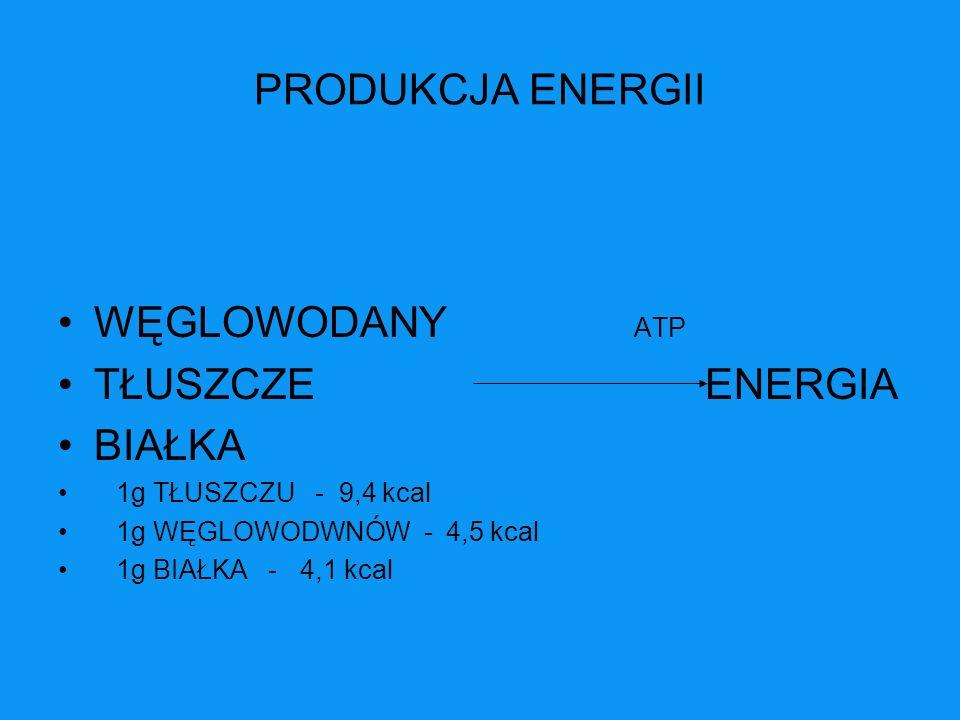 PRODUKCJA ENERGII WĘGLOWODANY ATP TŁUSZCZE ENERGIA BIAŁKA