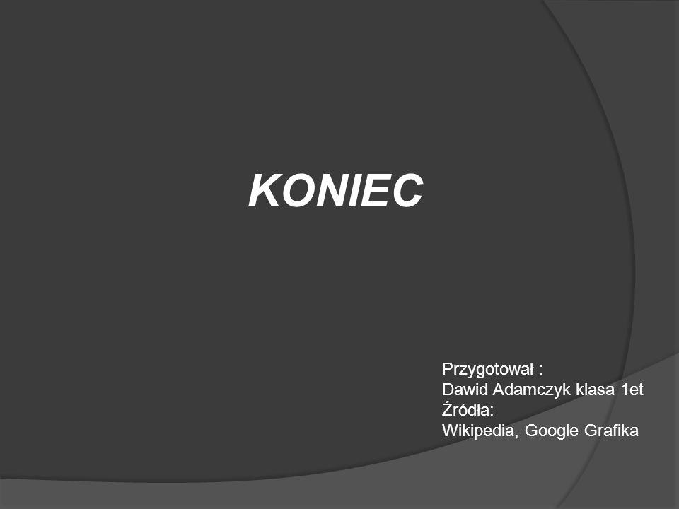 KONIEC Przygotował : Dawid Adamczyk klasa 1et Źródła: