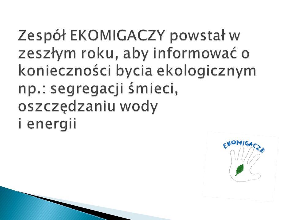 Zespół EKOMIGACZY powstał w zeszłym roku, aby informować o konieczności bycia ekologicznym np.: segregacji śmieci, oszczędzaniu wody i energii