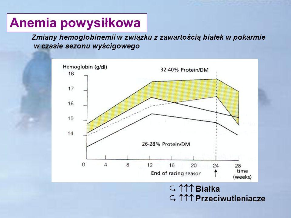 Anemia powysiłkowa  Białka  Przeciwutleniacze
