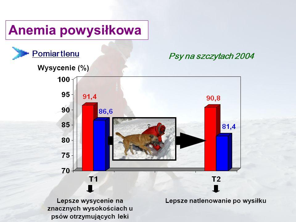 Anemia powysiłkowa Pomiar tlenu Psy na szczytach 2004 Wysycenie (%)
