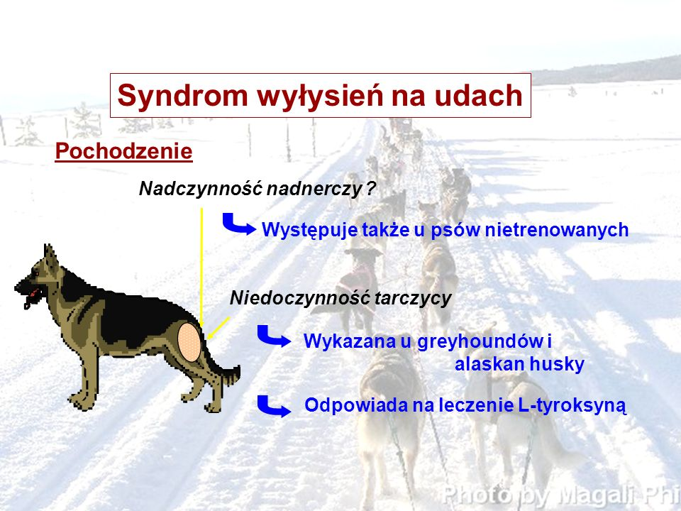 Syndrom wyłysień na udach