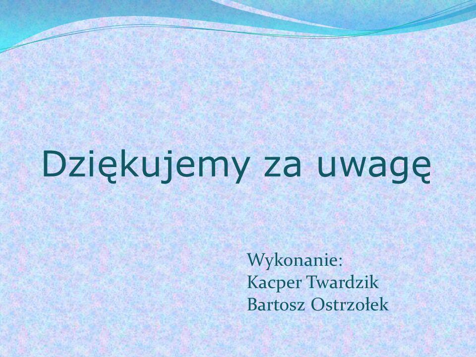 Dziękujemy za uwagę Wykonanie: Kacper Twardzik Bartosz Ostrzołek