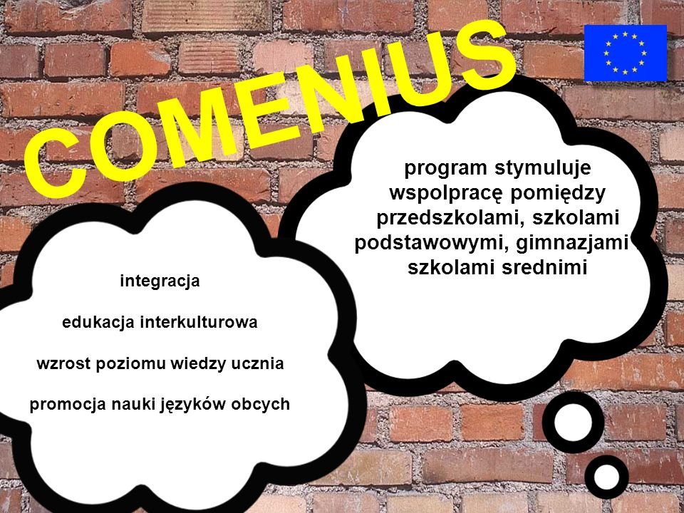 COMENIUS program stymuluje wspolpracę pomiędzy przedszkolami, szkolami podstawowymi, gimnazjami i szkolami srednimi.