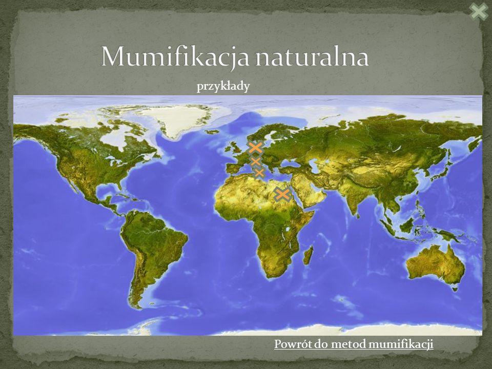 Mumifikacja naturalna