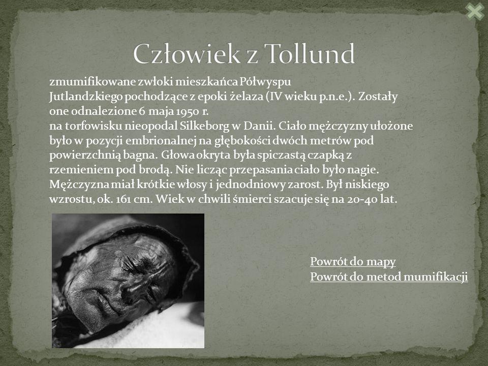 Człowiek z Tollund