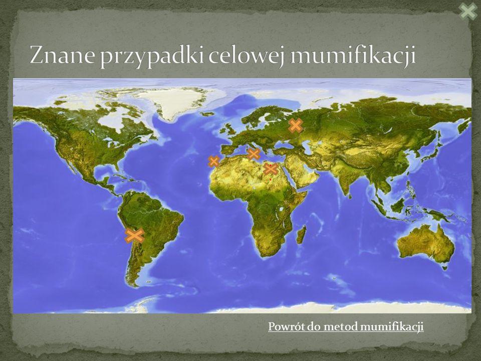 Znane przypadki celowej mumifikacji