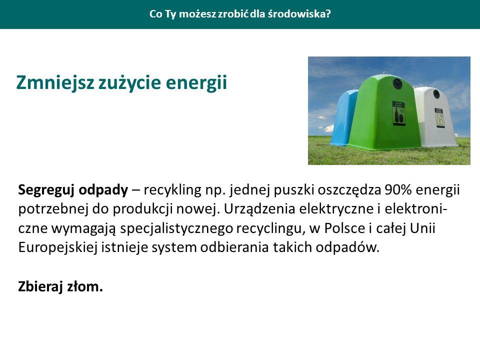Co Ty możesz zrobić dla środowiska