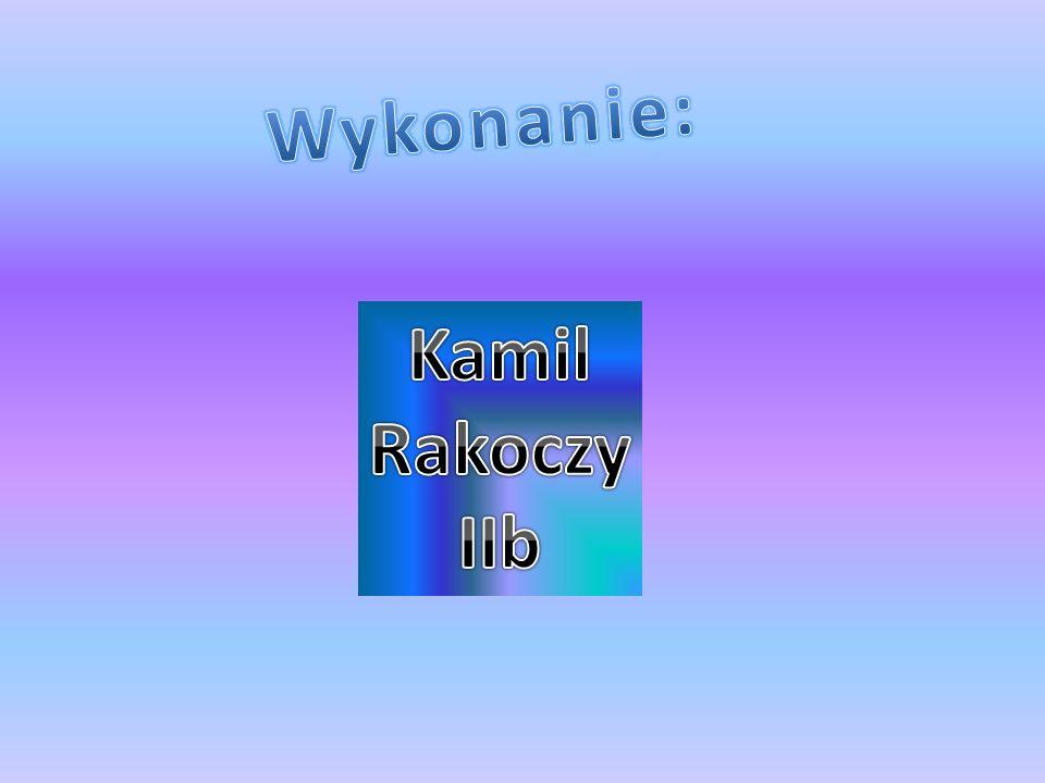 Wykonanie: Kamil Rakoczy IIb