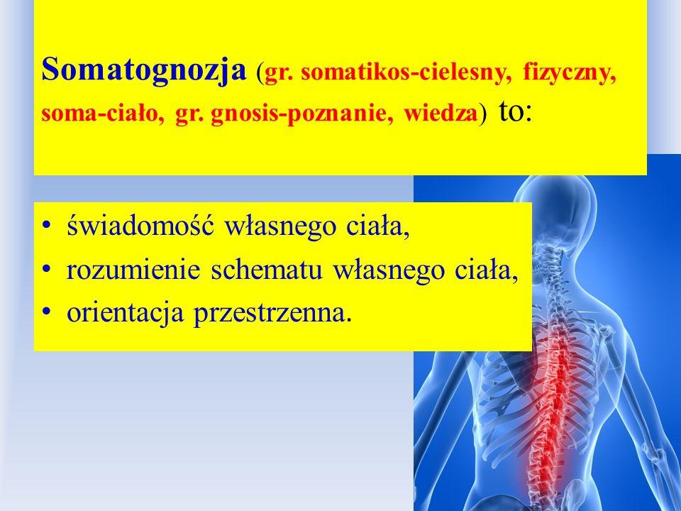 Somatognozja (gr. somatikos-cielesny, fizyczny, soma-ciało, gr