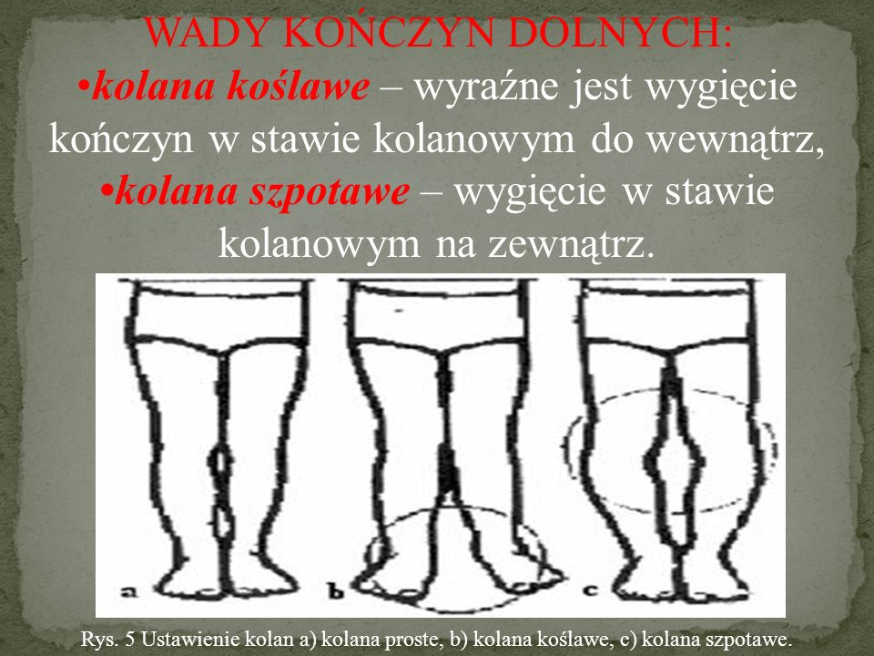 WADY KOŃCZYN DOLNYCH: