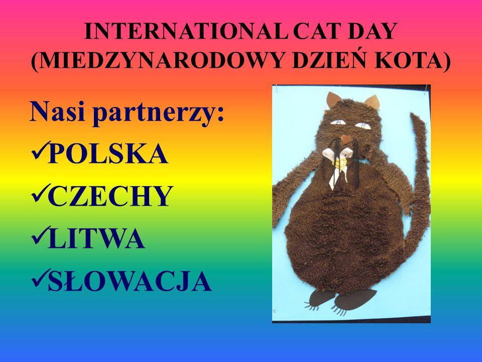 INTERNATIONAL CAT DAY (MIEDZYNARODOWY DZIEŃ KOTA)