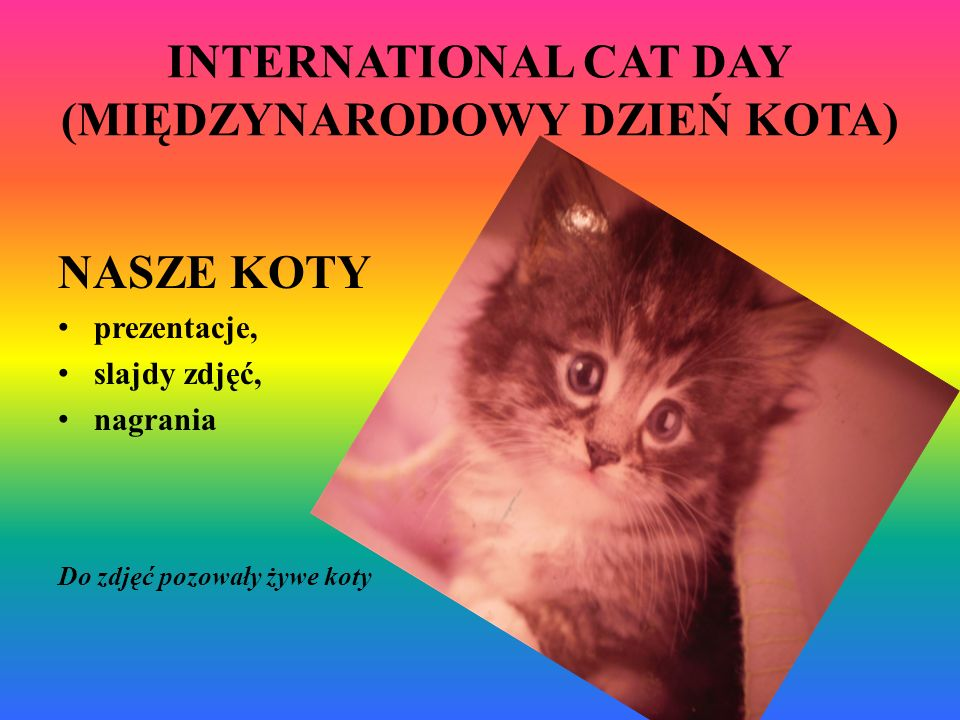 INTERNATIONAL CAT DAY (MIĘDZYNARODOWY DZIEŃ KOTA)