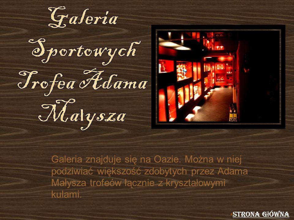Galeria Sportowych Trofea Adama Małysza