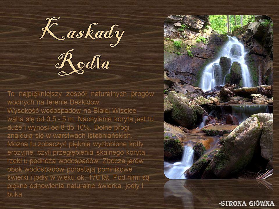 Kaskady Rodła To najpiękniejszy zespół naturalnych progów wodnych na terenie Beskidów.