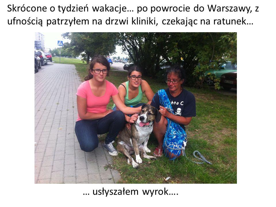 Skrócone o tydzień wakacje… po powrocie do Warszawy, z ufnością patrzyłem na drzwi kliniki, czekając na ratunek…