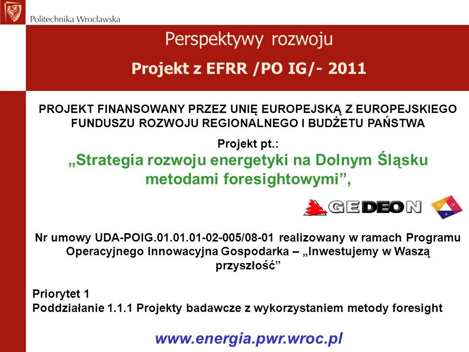 Perspektywy rozwoju Projekt z EFRR /PO IG/- 2011
