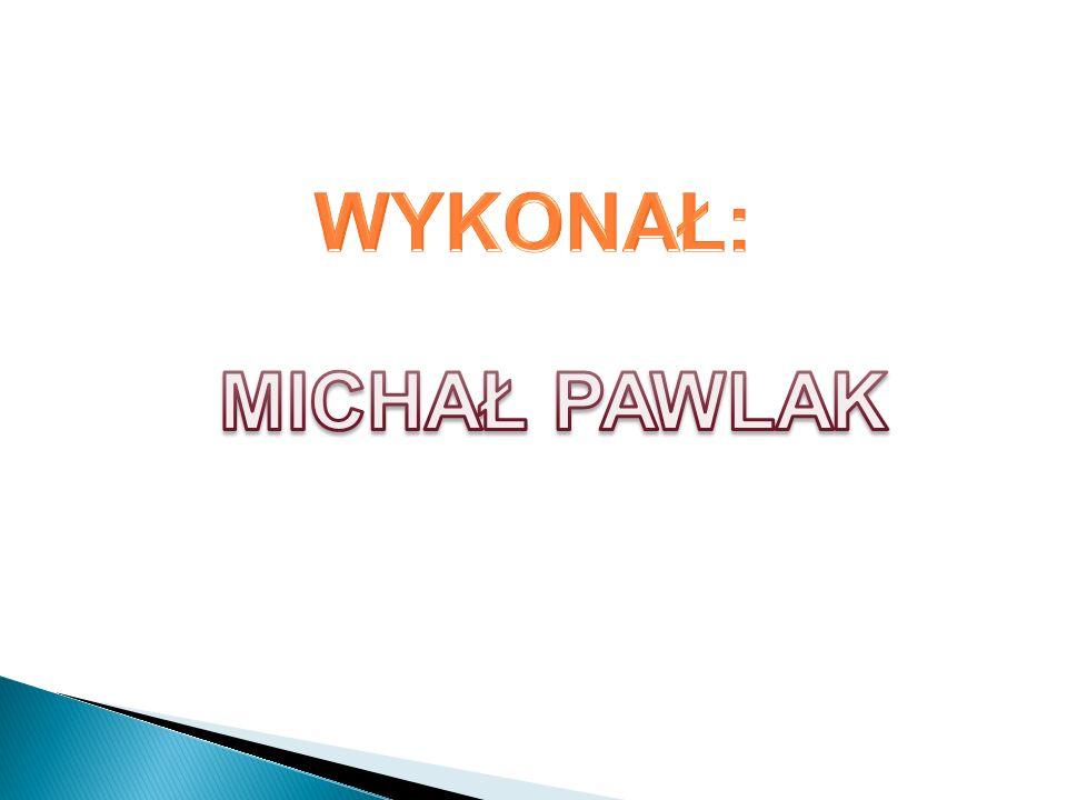 WYKONAŁ: MICHAŁ PAWLAK