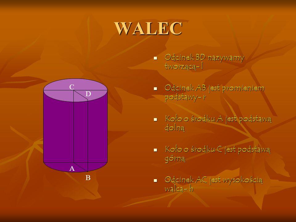 WALEC Odcinek BD nazywamy tworzącą- l