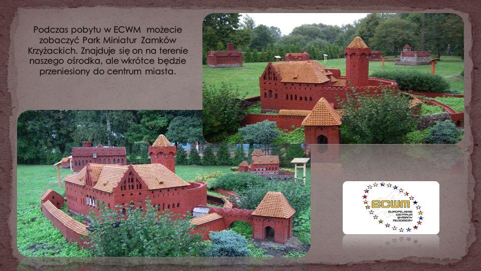 Podczas pobytu w ECWM możecie zobaczyć Park Miniatur Zamków Krzyżackich.