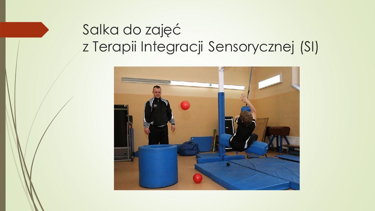 Salka do zajęć z Terapii Integracji Sensorycznej (SI)