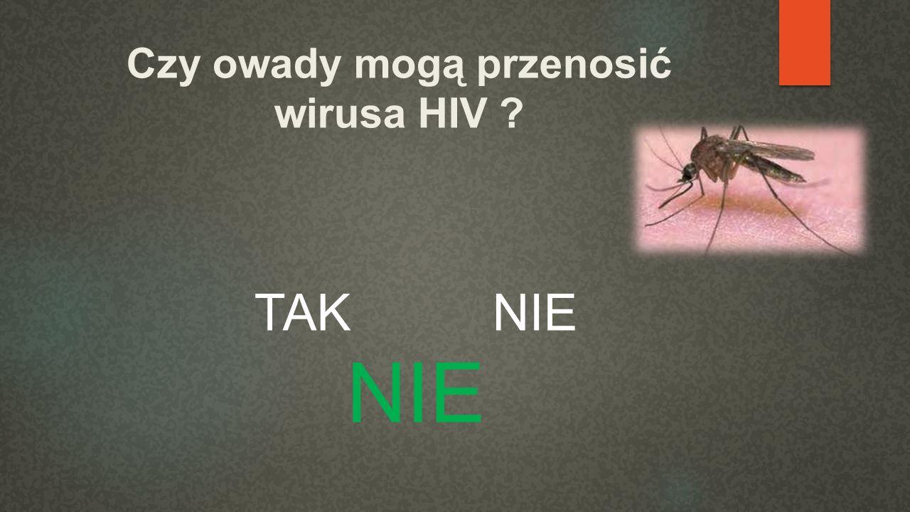Czy owady mogą przenosić wirusa HIV