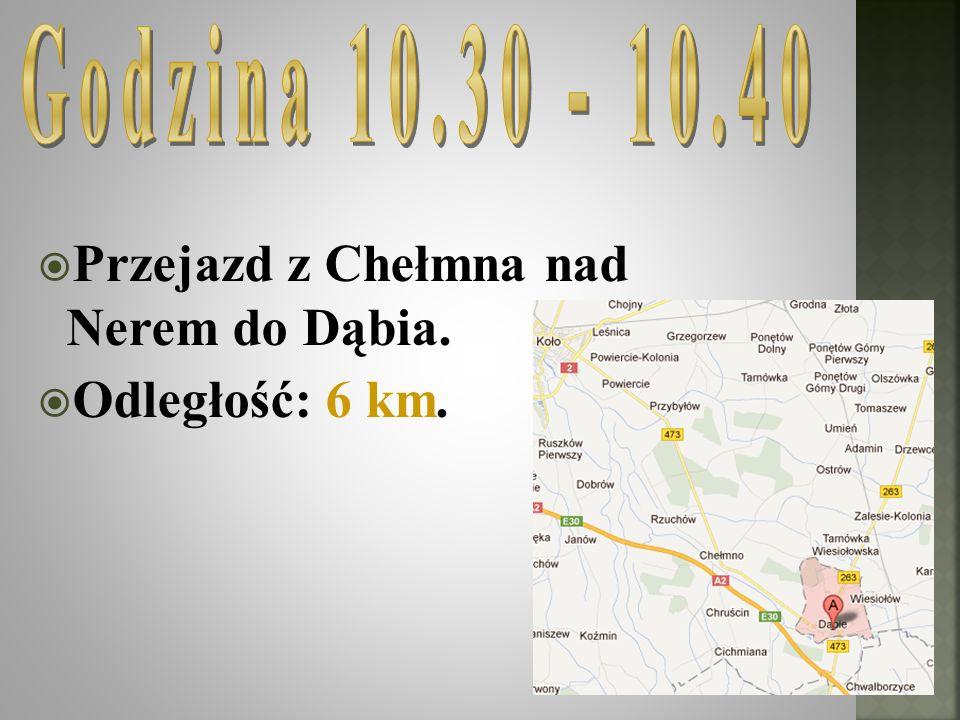 Przejazd z Chełmna nad Nerem do Dąbia. Odległość: 6 km.
