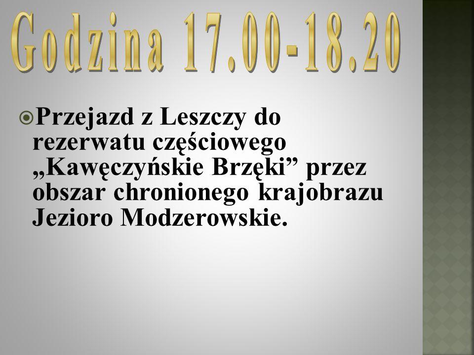 """Godzina 17.00-18.20 Przejazd z Leszczy do rezerwatu częściowego """"Kawęczyńskie Brzęki przez obszar chronionego krajobrazu Jezioro Modzerowskie."""