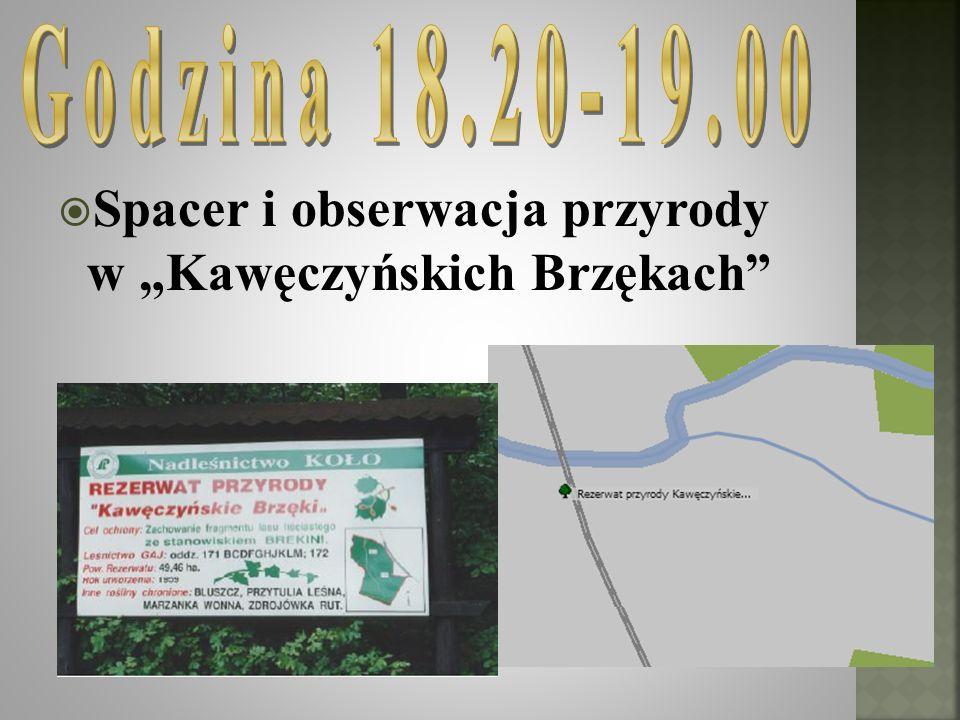 """Spacer i obserwacja przyrody w """"Kawęczyńskich Brzękach"""