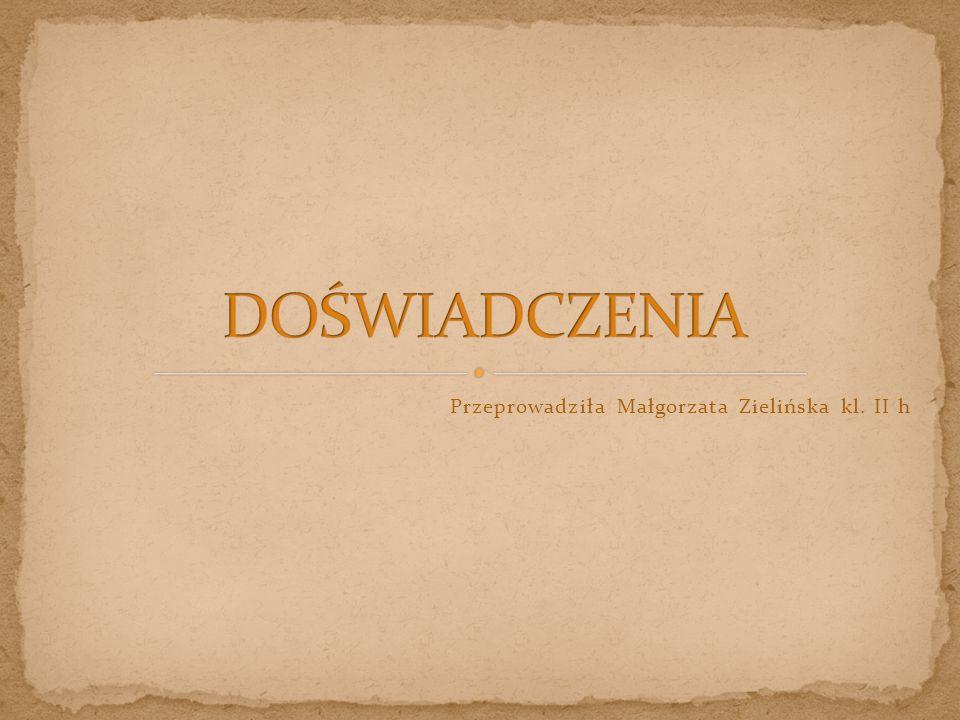 Przeprowadziła Małgorzata Zielińska kl. II h