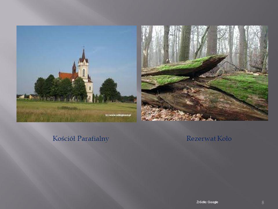 Kościół Parafialny Rezerwat Koło Żródło: Google