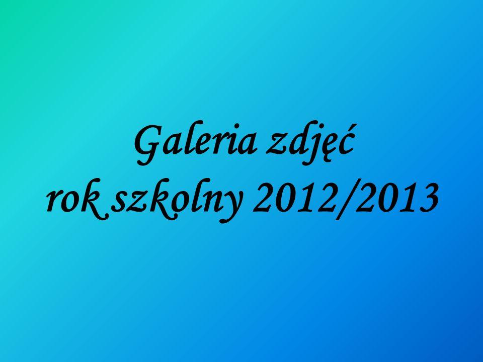 Galeria zdjęć rok szkolny 2012/2013