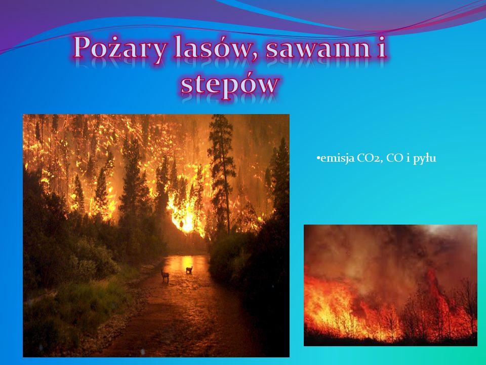 Pożary lasów, sawann i stepów