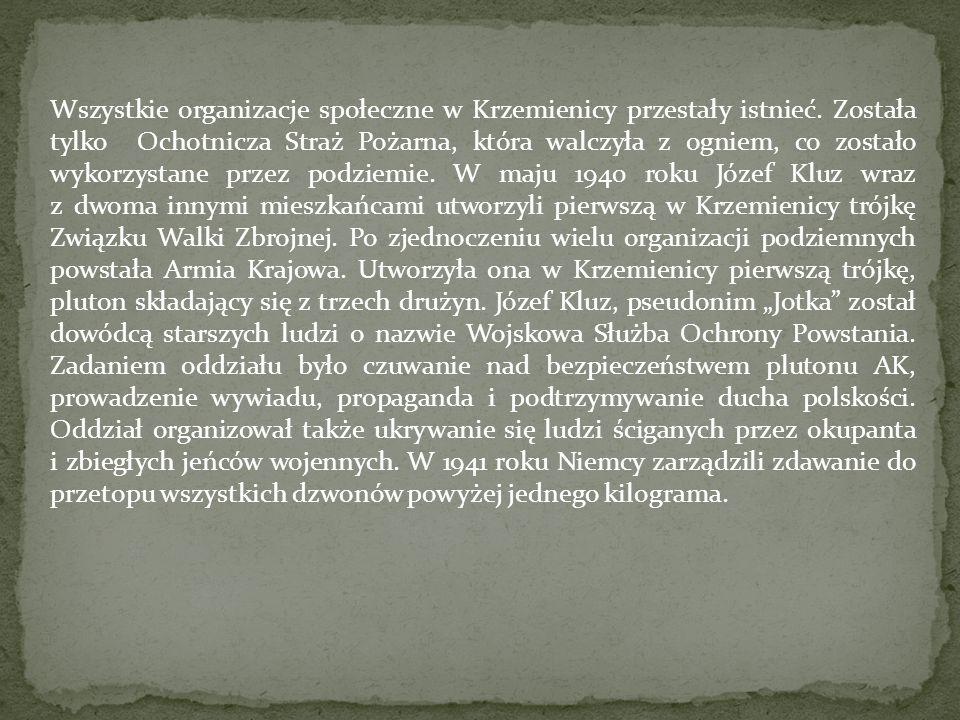 Wszystkie organizacje społeczne w Krzemienicy przestały istnieć