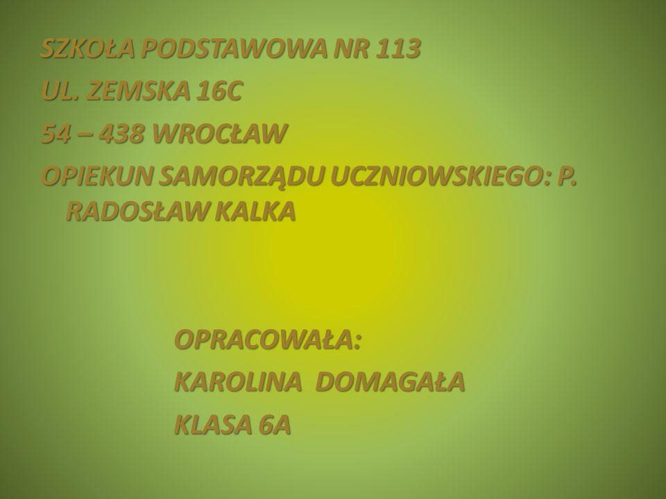 SZKOŁA PODSTAWOWA NR 113 UL