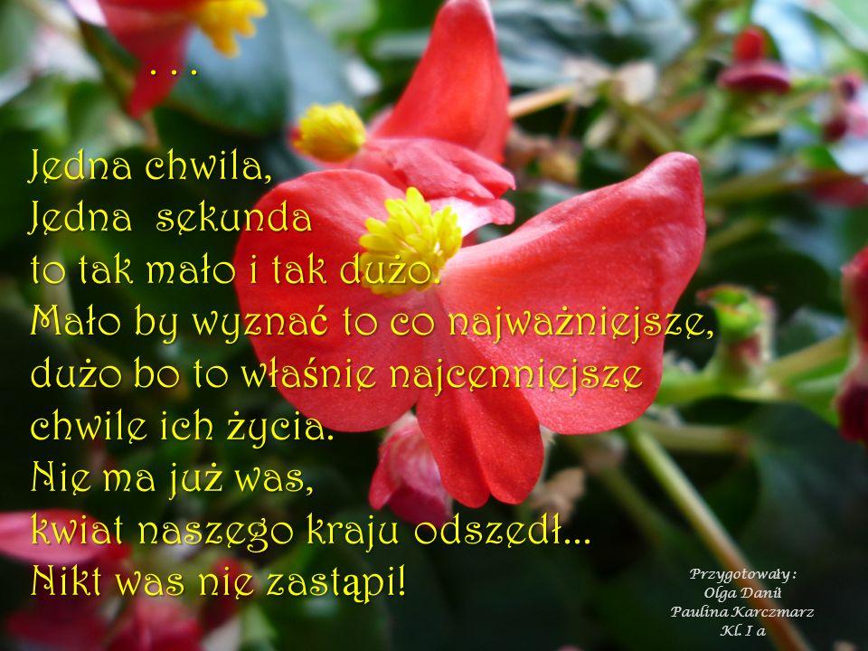 Przygotowały : Olga Danił Paulina Karczmarz Kl. I a