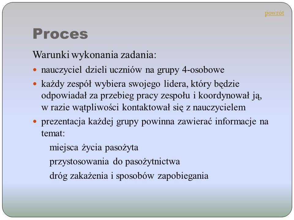 Proces Warunki wykonania zadania:
