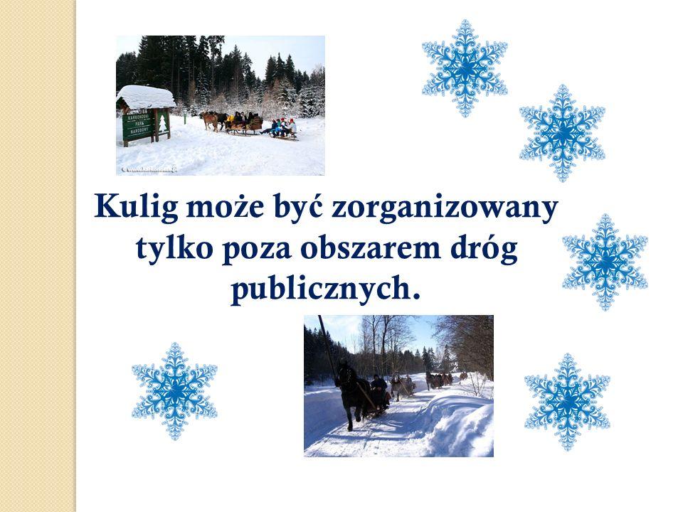 Kulig może być zorganizowany tylko poza obszarem dróg publicznych.