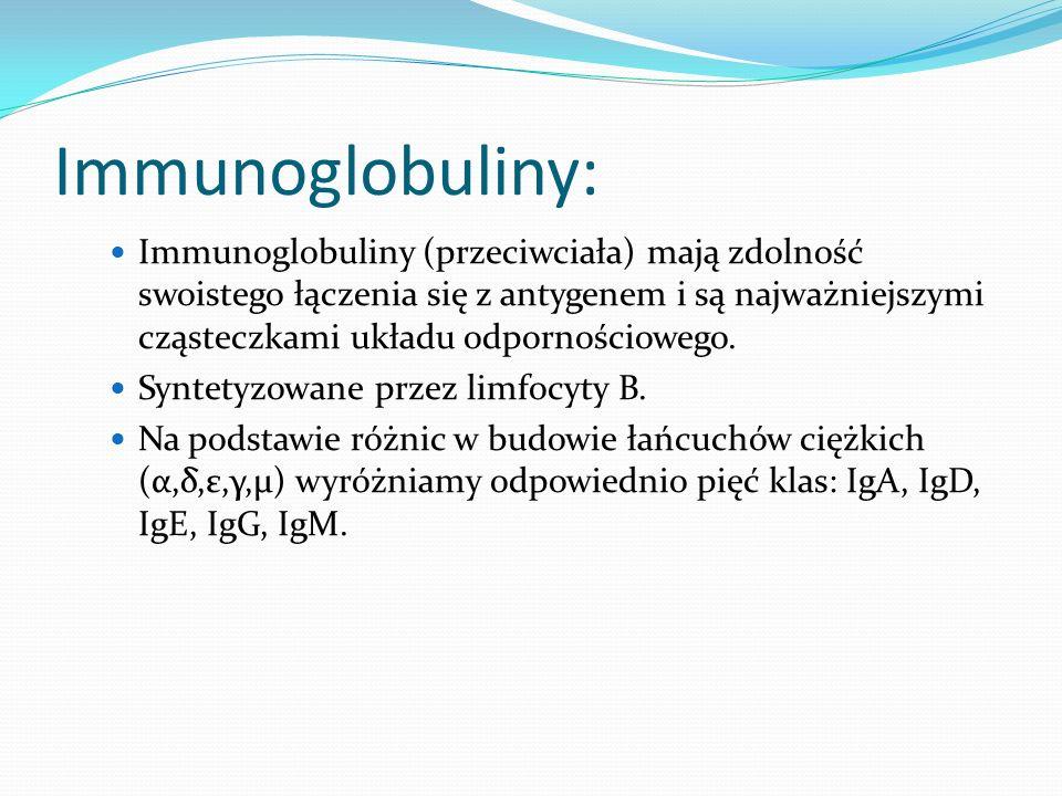 Immunoglobuliny: