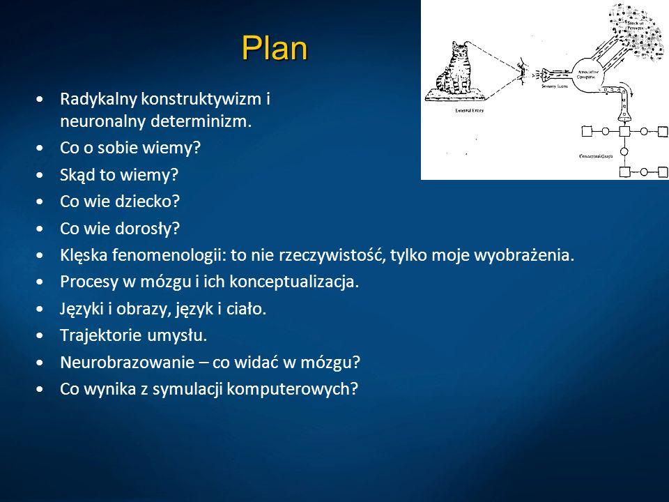 Plan Radykalny konstruktywizm i neuronalny determinizm.