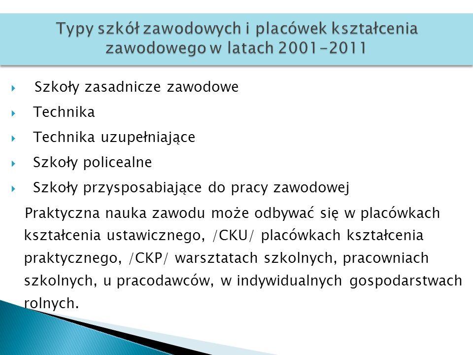Typy szkół zawodowych i placówek kształcenia zawodowego w latach 2001-2011