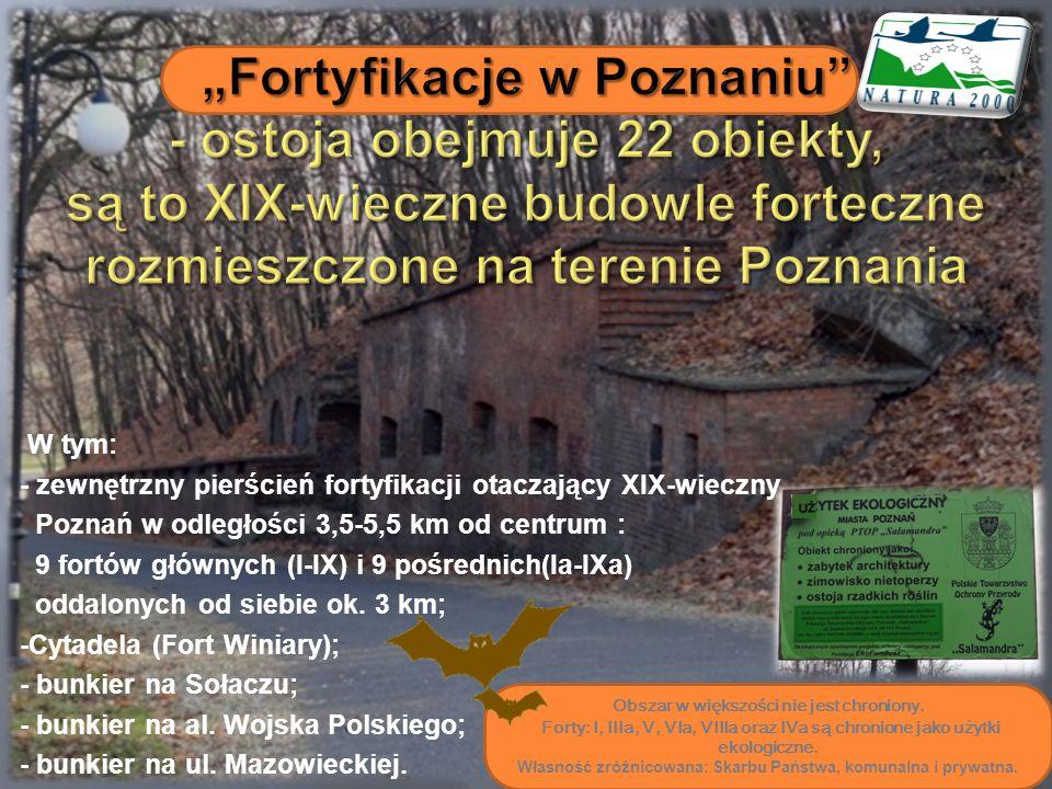 """""""Fortyfikacje w Poznaniu - ostoja obejmuje 22 obiekty, są to XIX-wieczne budowle forteczne rozmieszczone na terenie Poznania"""