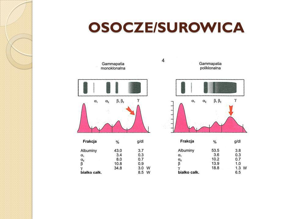 OSOCZE/SUROWICA