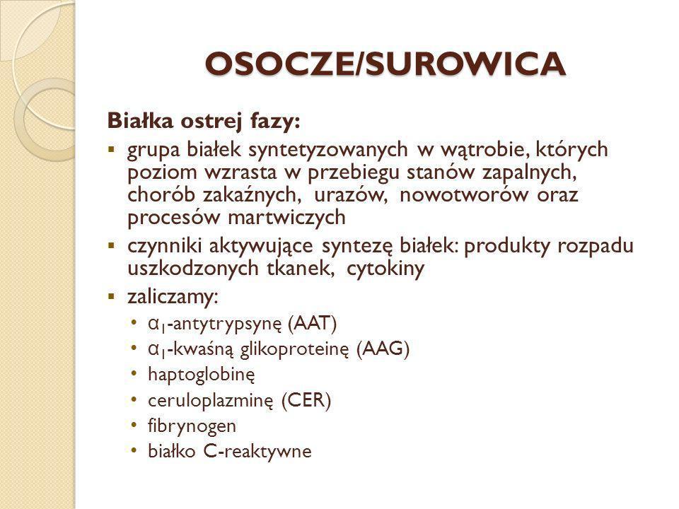 OSOCZE/SUROWICA Białka ostrej fazy: