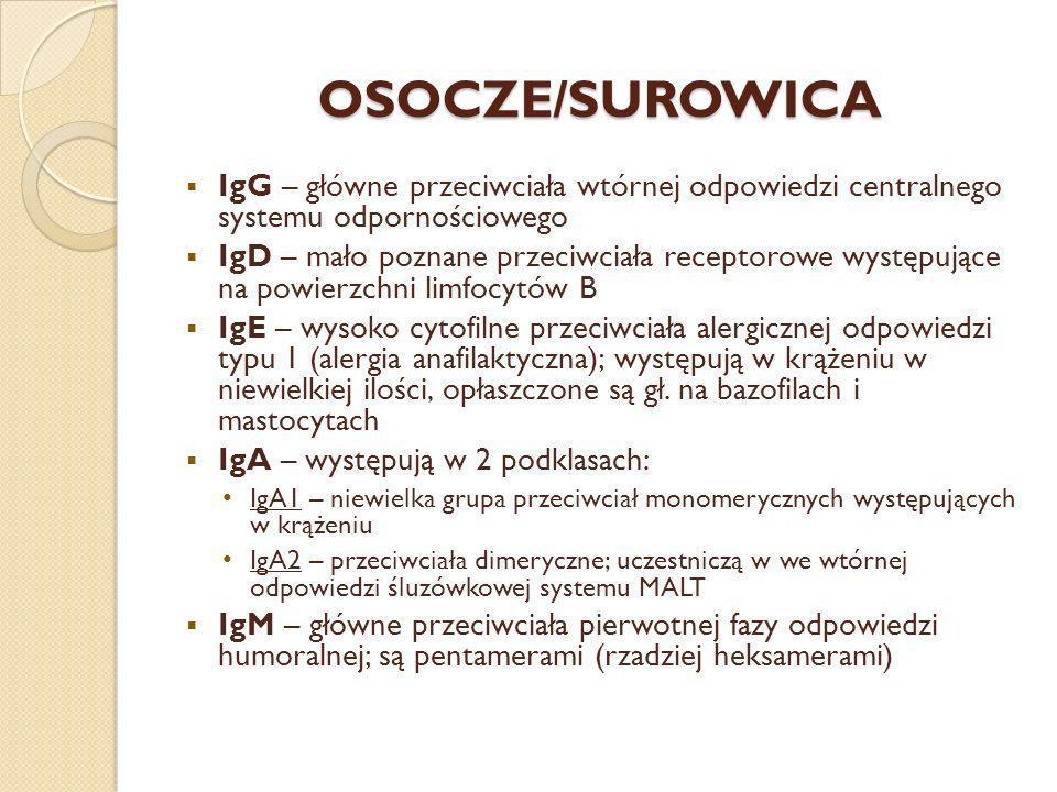 OSOCZE/SUROWICA IgG – główne przeciwciała wtórnej odpowiedzi centralnego systemu odpornościowego.